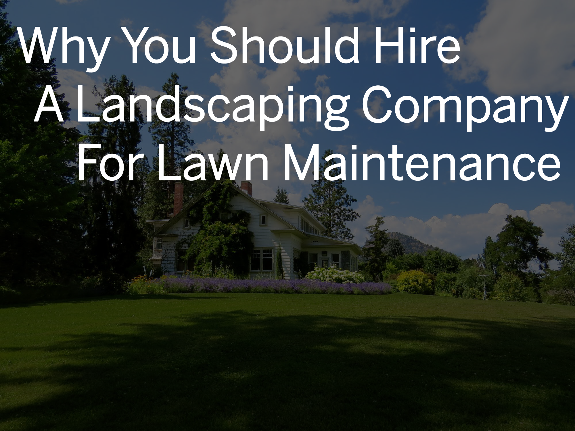 lawn care company in windsor